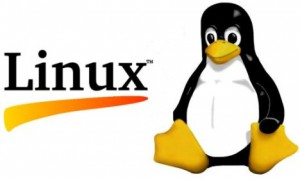 1991 Linux Logo by Flickr/methodshop