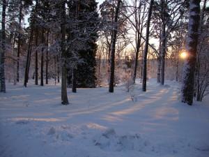 Jönköping, courtesy of Pixabay